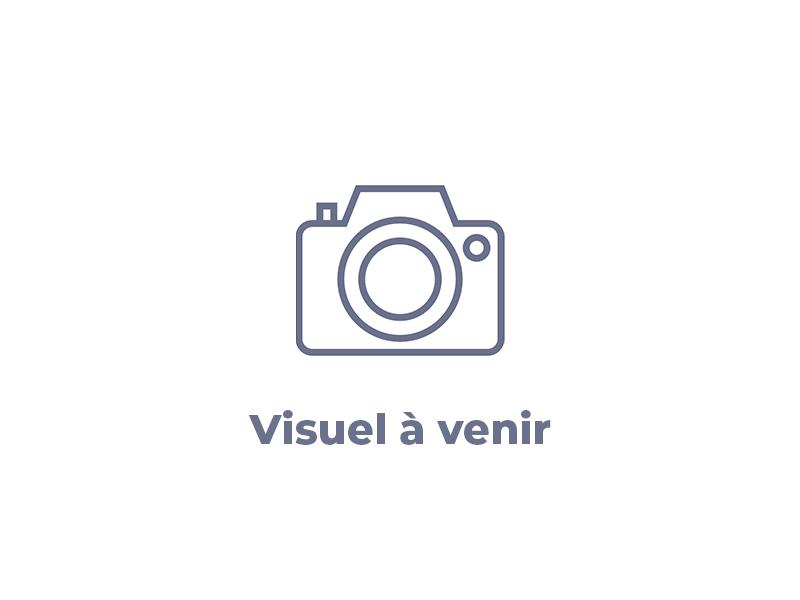 Visuel non disponible FIAT 500 1.2 8v 69ch Lounge